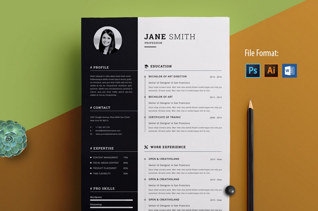 Modern simple template for curriculum. 30 Best Free Resume Templates For Word Design Shack