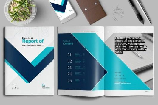 Contiguous Annual Report Template