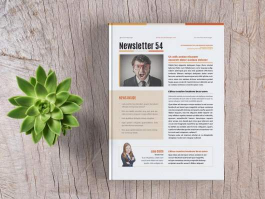 Free Basic InDesign Newsletter Template