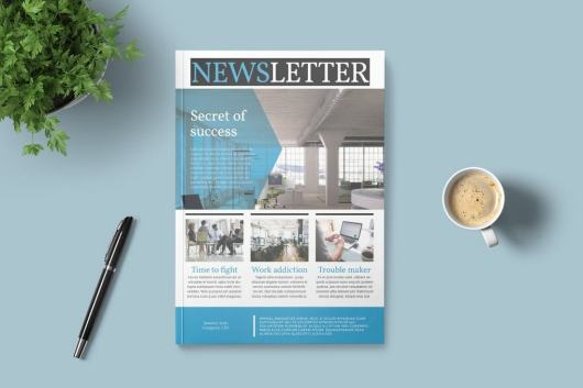 Modern Corporate InDesign Newsletter Template