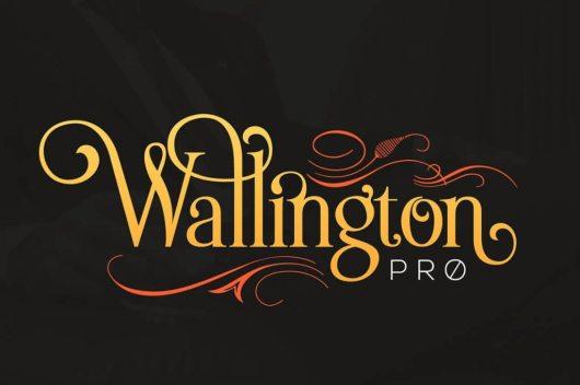 cm-wallington-cover-o