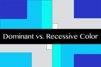 Understanding Color: Dominant vs. Recessive Colors ...