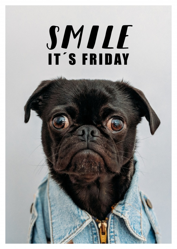 Funny Friday Images And Quotes : funny, friday, images, quotes, SMILE, IT´s, FRIDAY, Weekend, Quotes, Because, Cards, Postcards, Online