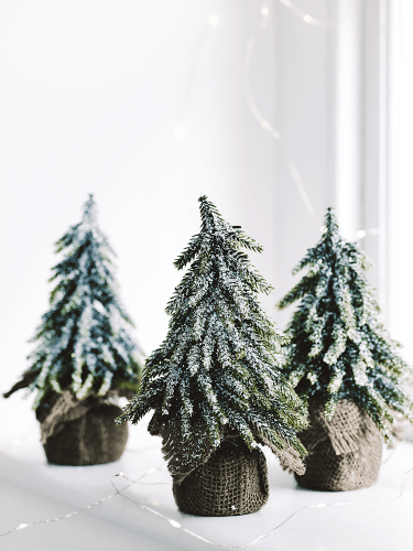 miniature-snowy-christmas-tree-Cox-&_Cox