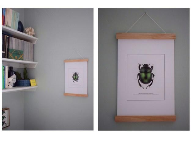 Interior design ideas entomology bug beetle wall art print