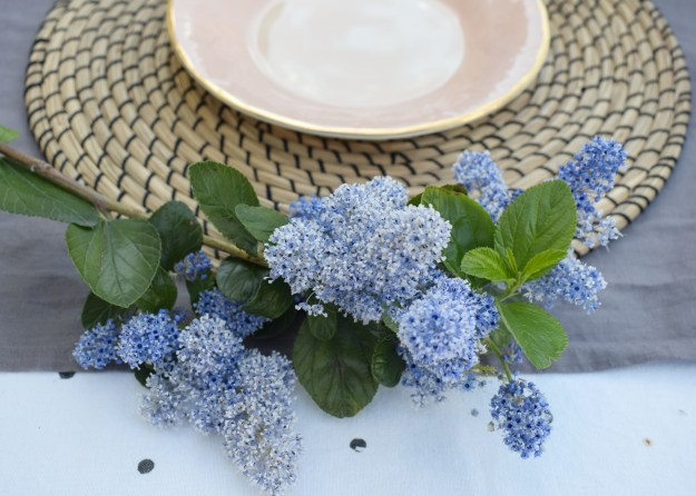 simple relaxed outdoor tablescape ideas, scandinavian linen botanical, simple Ceanothus sprig