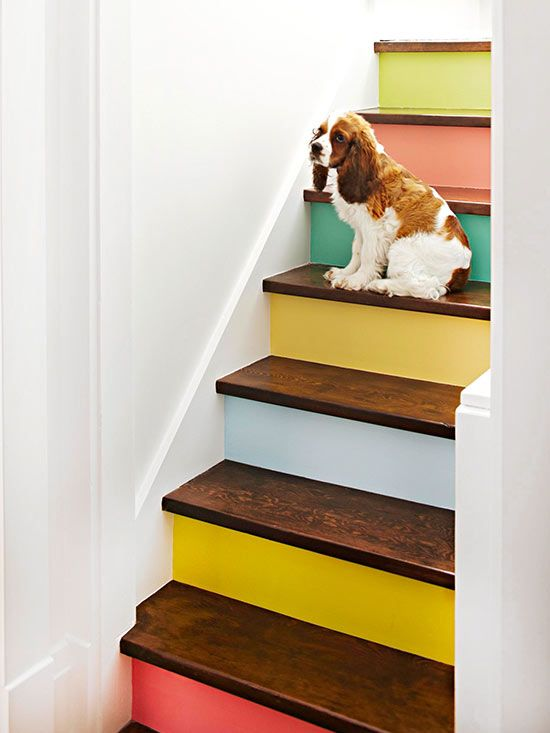 Interior Decor, ideas and inspiration for statement stairs design, colourful painted stairs wooden treads
