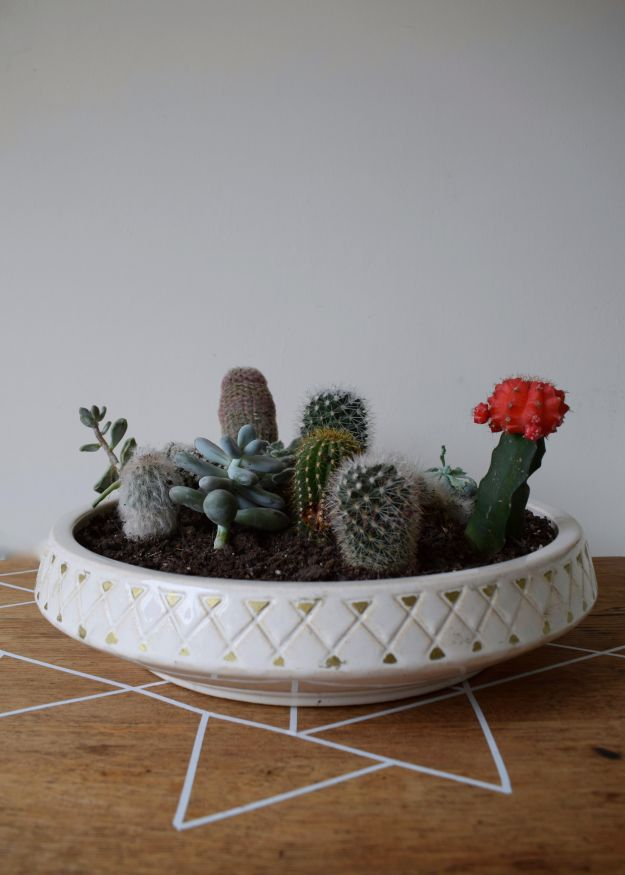 Kitchen Farrow ball slipper satin, vintage Scandinavian rustic budget kitchen refresh, artisan design and styling, monochrome colour base, terrarium bowl cacti succulents mid century dish (2)