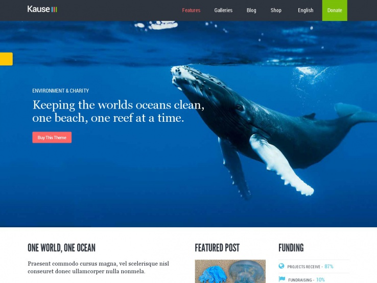 blue-color-wordpress-theme