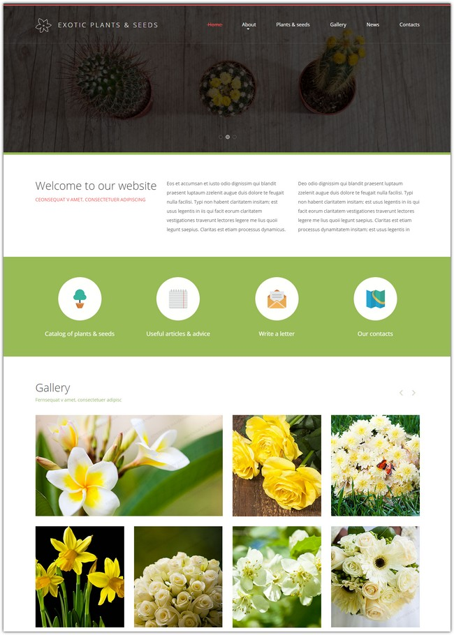 Best Plant Website Template