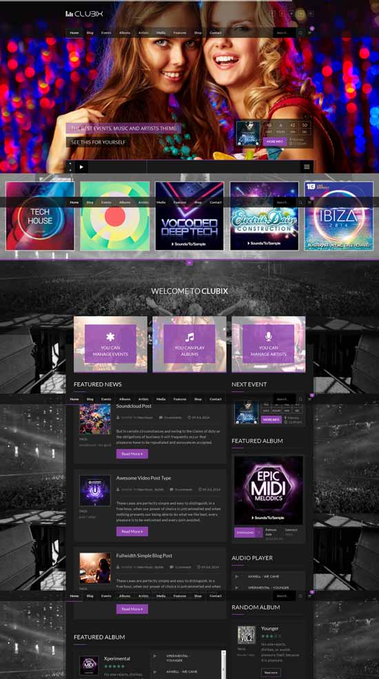 Night life WordPress Theme club
