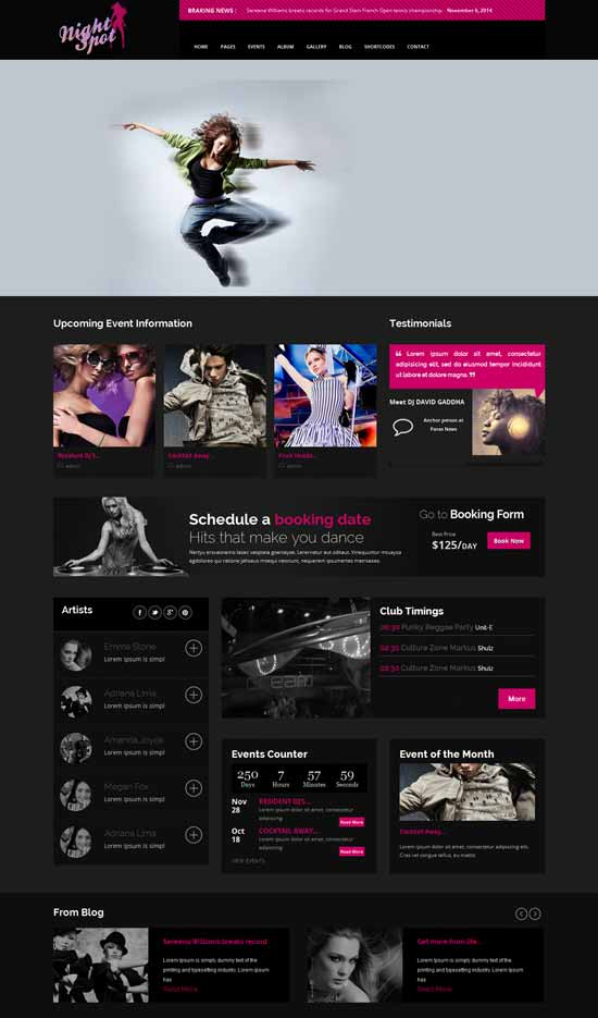 Responsive worldpress Theme