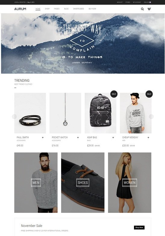 Best Shopping wordpress Theme