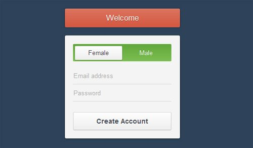 Css3 Registration Form Download