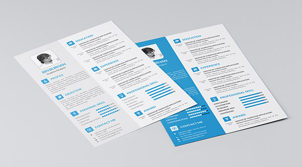 Freebie Indesign Resume Templates