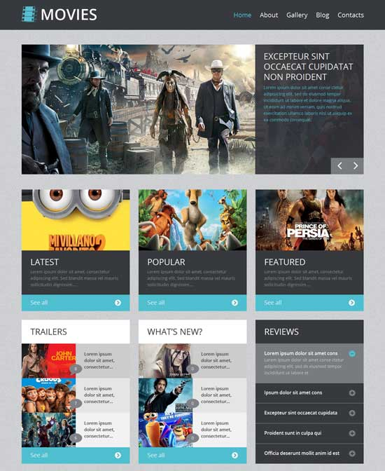 Movie Video WordPress Theme