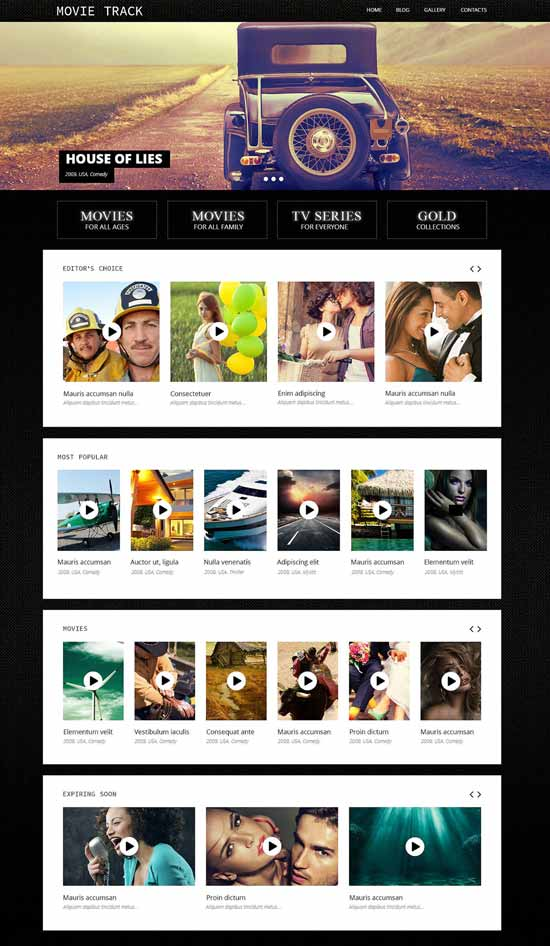 Online Movies Video WordPress Theme