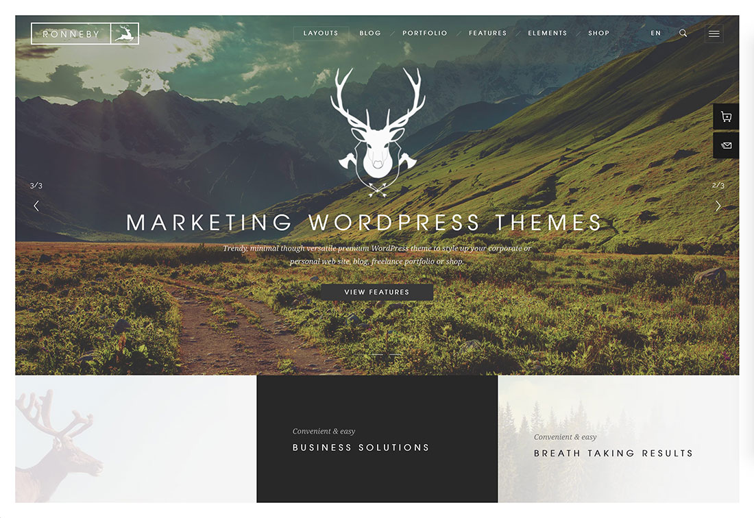 Shopify Themes for online stores