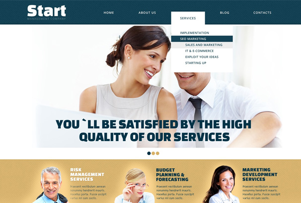 Start insurance wordpress theme
