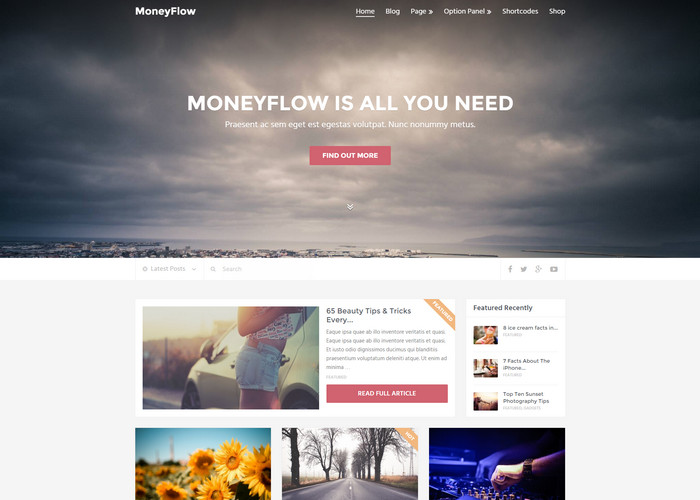 moneyflow Affiliate Marketing WP Themes
