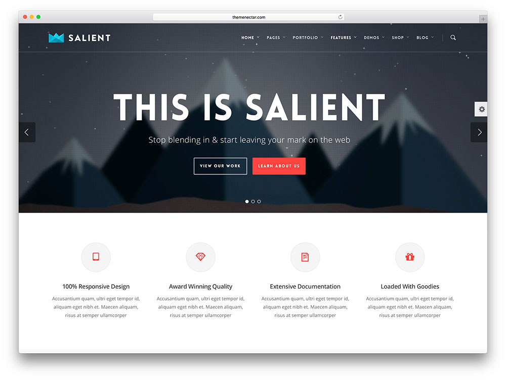 salient modern Insurance WordPress Theme