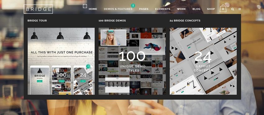 Bridge WordPress Business Theme Admin templete