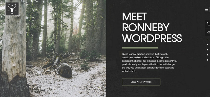 Ronneby Premium Responsive WordPress Business Theme