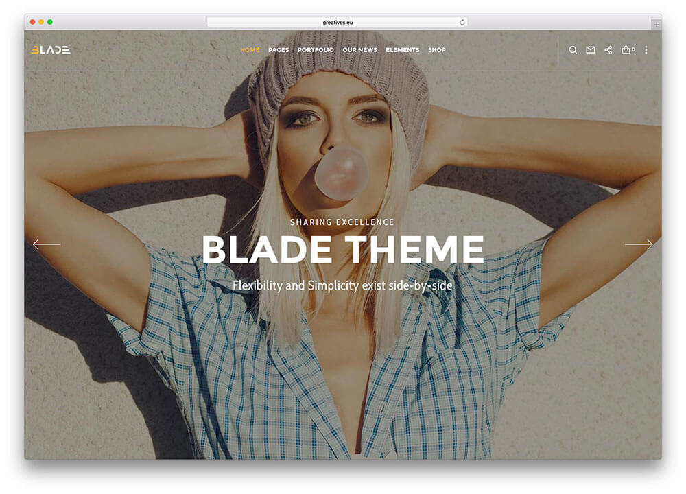 blade WordPress Business Theme Admin templete
