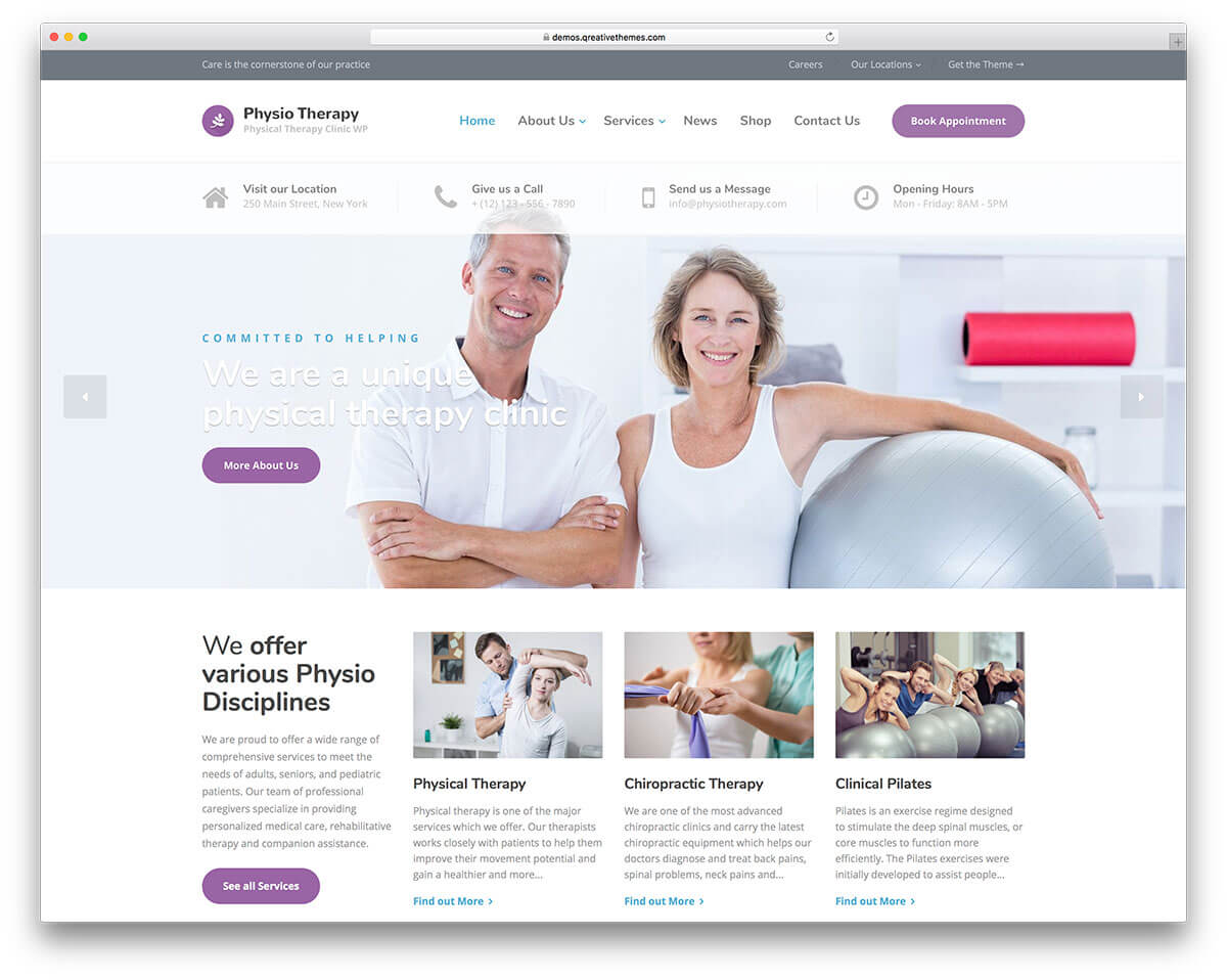 physiotherapy Business Theme 2017