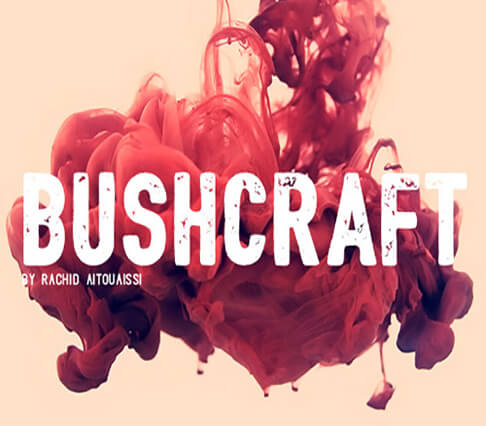 Bushcraft+font Best Free Font for Hipsters 2017
