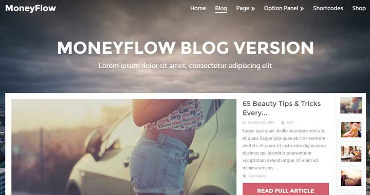 MoneyFlow Friendly WordPress Theme 2017