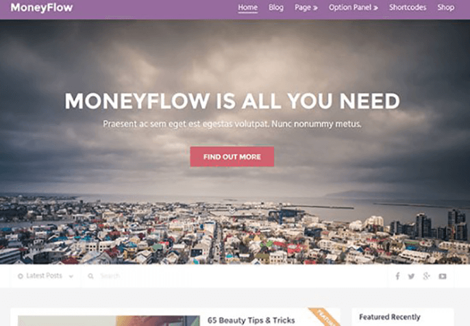 MoneyFlow Theme for Product Review Website