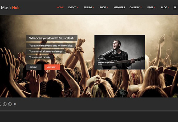 MusicHub Best Music WordPress Theme