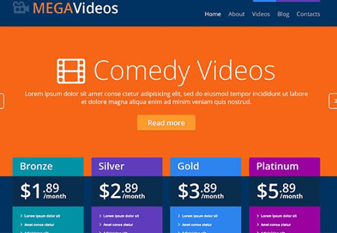 Video Services Product Review Website