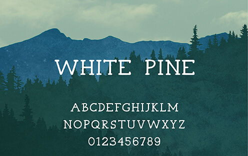 White Pine Font for Hipsters