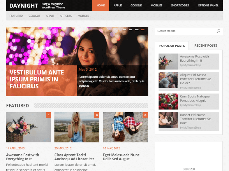 daynight Best Responsive Magazine WordPress Theme