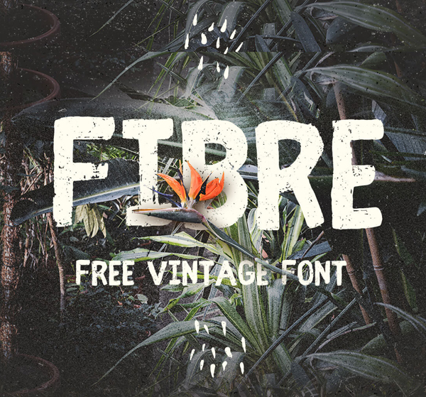 fibre Free Font 2017 for Graphic Designers