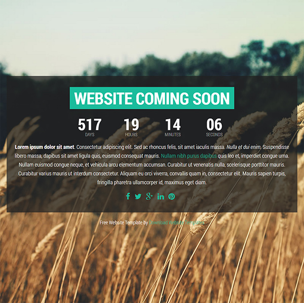 free website HTML Website Template (2)