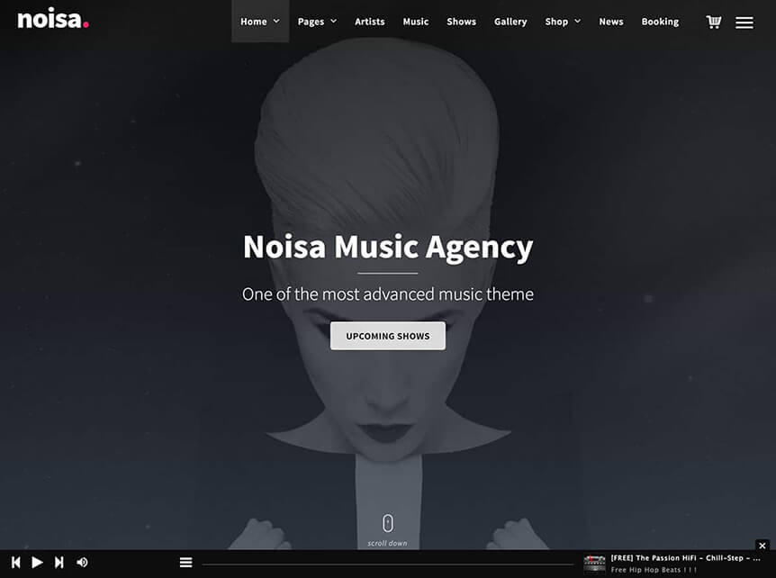 noisa Music WordPress Theme for Musicians & Bands