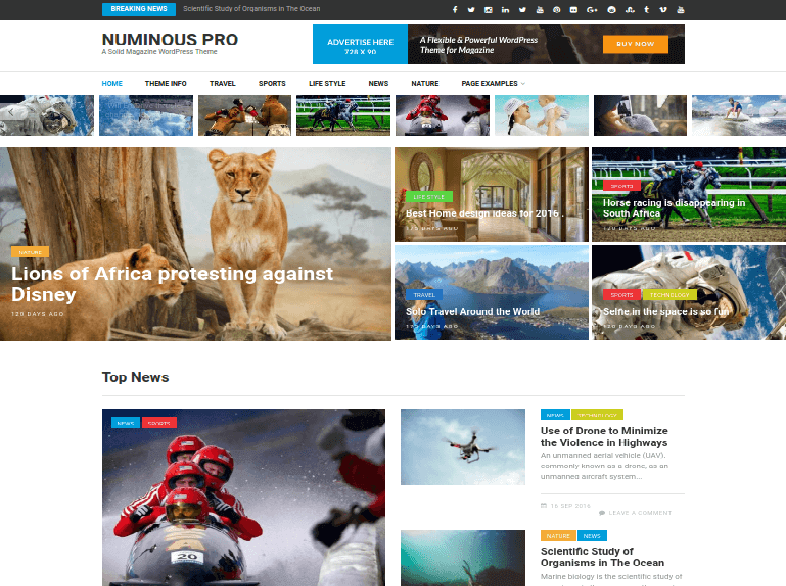 numinous pro Magazine WordPress