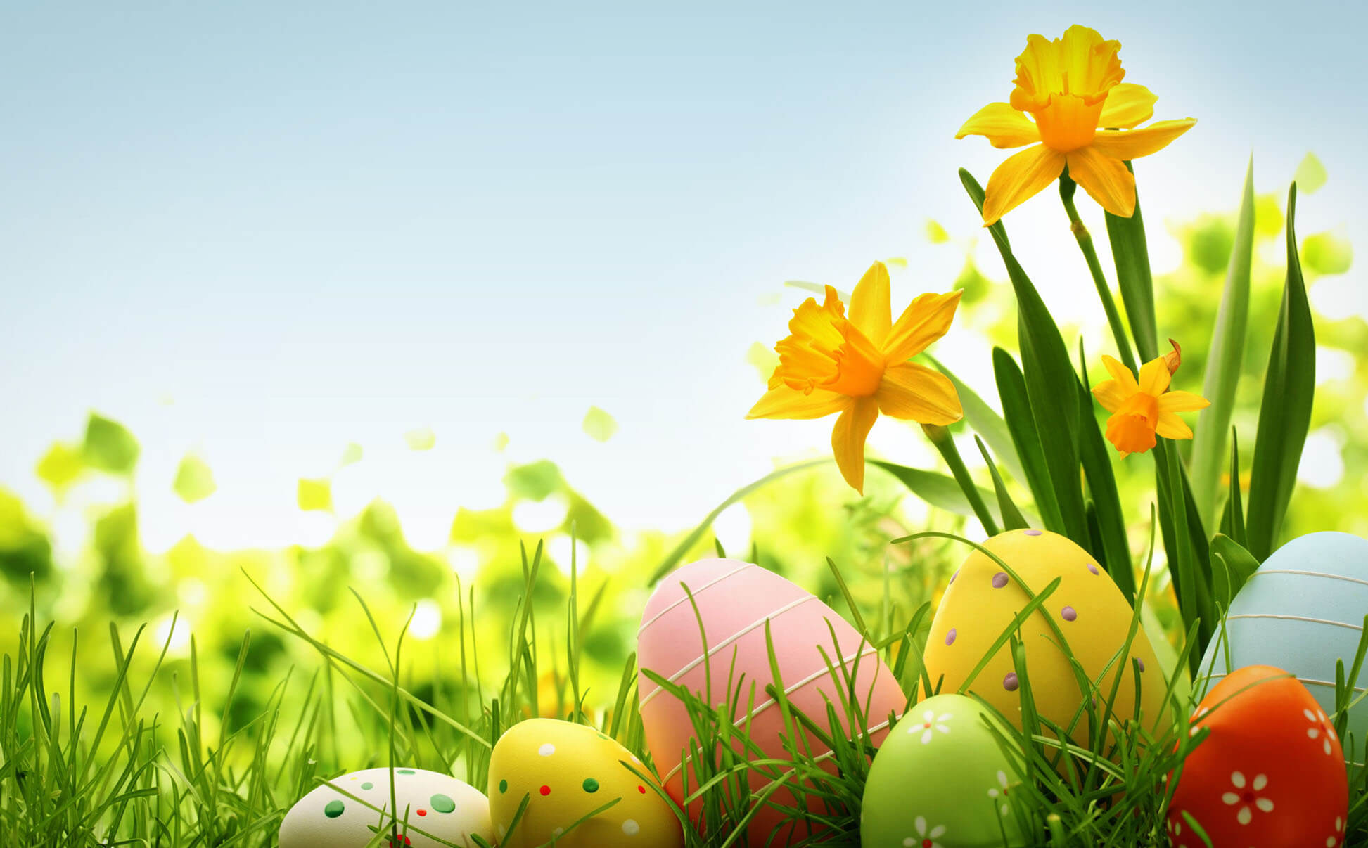 Flower Cute Easter Wallpaper