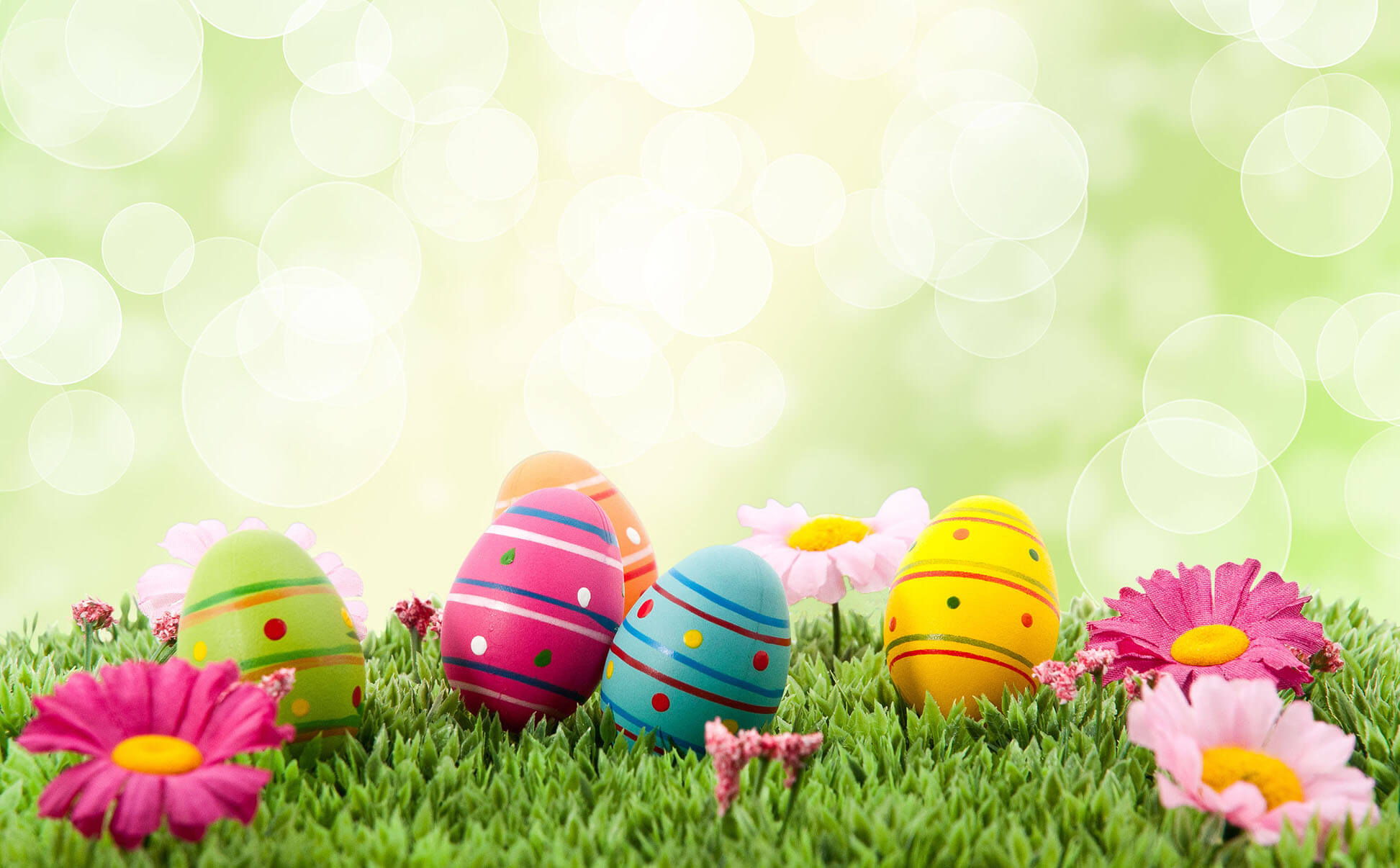 Happy one Easter Wallpaper