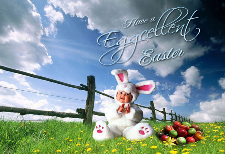 New Beautiful & Cute Easter