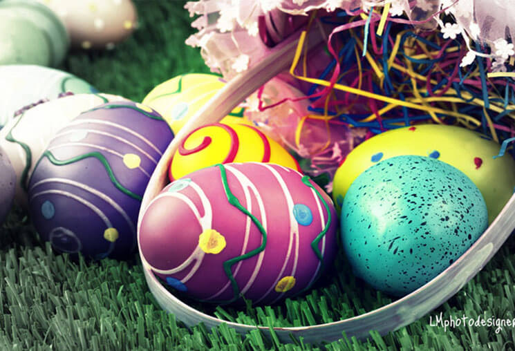 Show Beautiful & Cute Easter