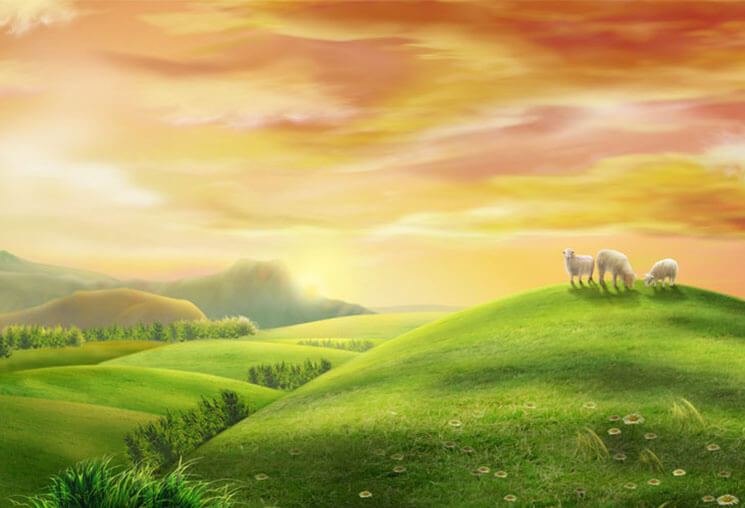 sheep Most Beautiful & Cute Easter Wallpaper