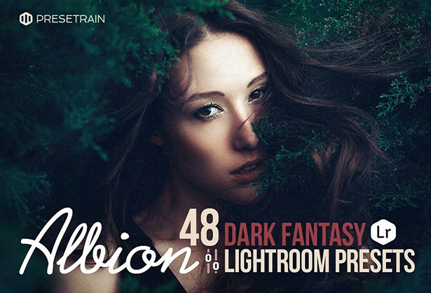 Albion Dark Best Lightroom