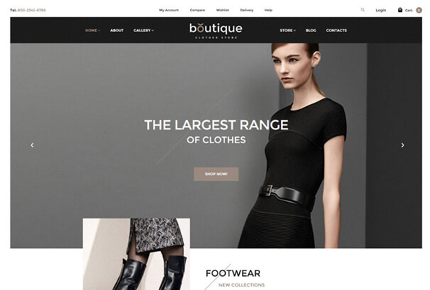 Black Store WordPress Theme