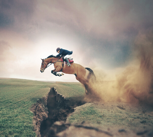 Horse Extremely Creative Photo Manipulatio