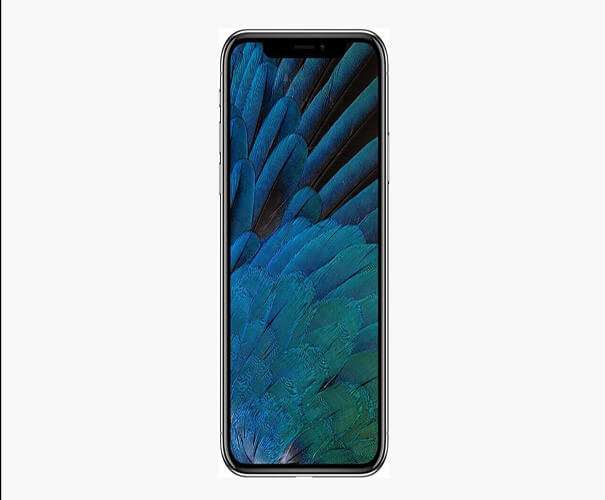Mockup Best Free iPhone X