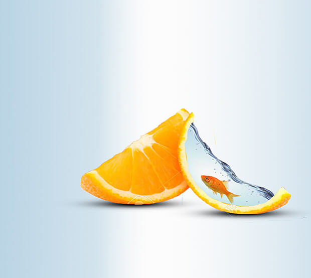 Orange Extremely Creative Photo Manipulation